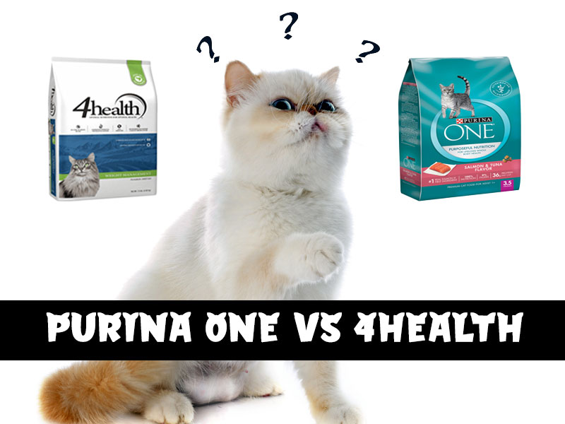How does Purina one compare to 4health cat food